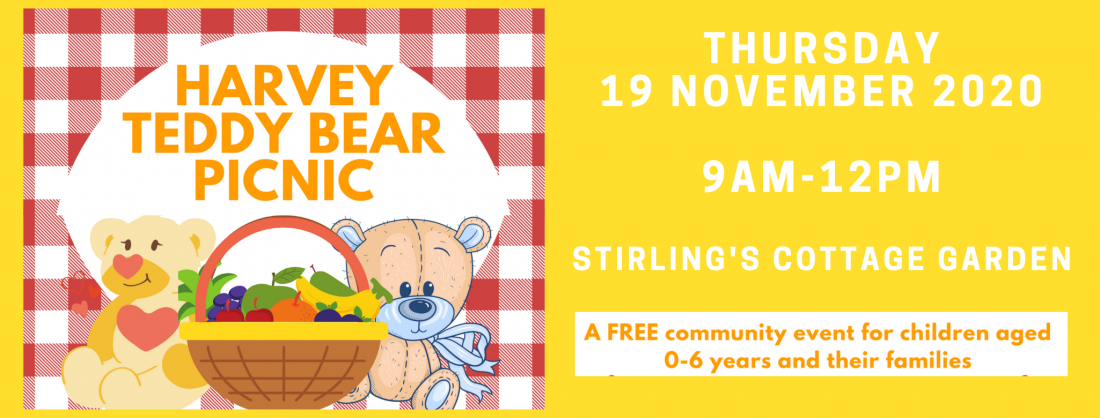 HARVEY TEDDY BEAR PICNIC