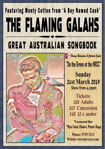 Monty Cotton and the Flaming Galahs